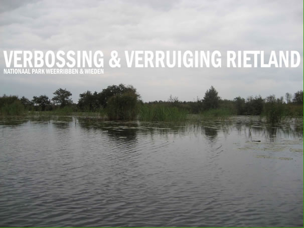 Verbossing & verruiging rietland Weerribben & Wieden