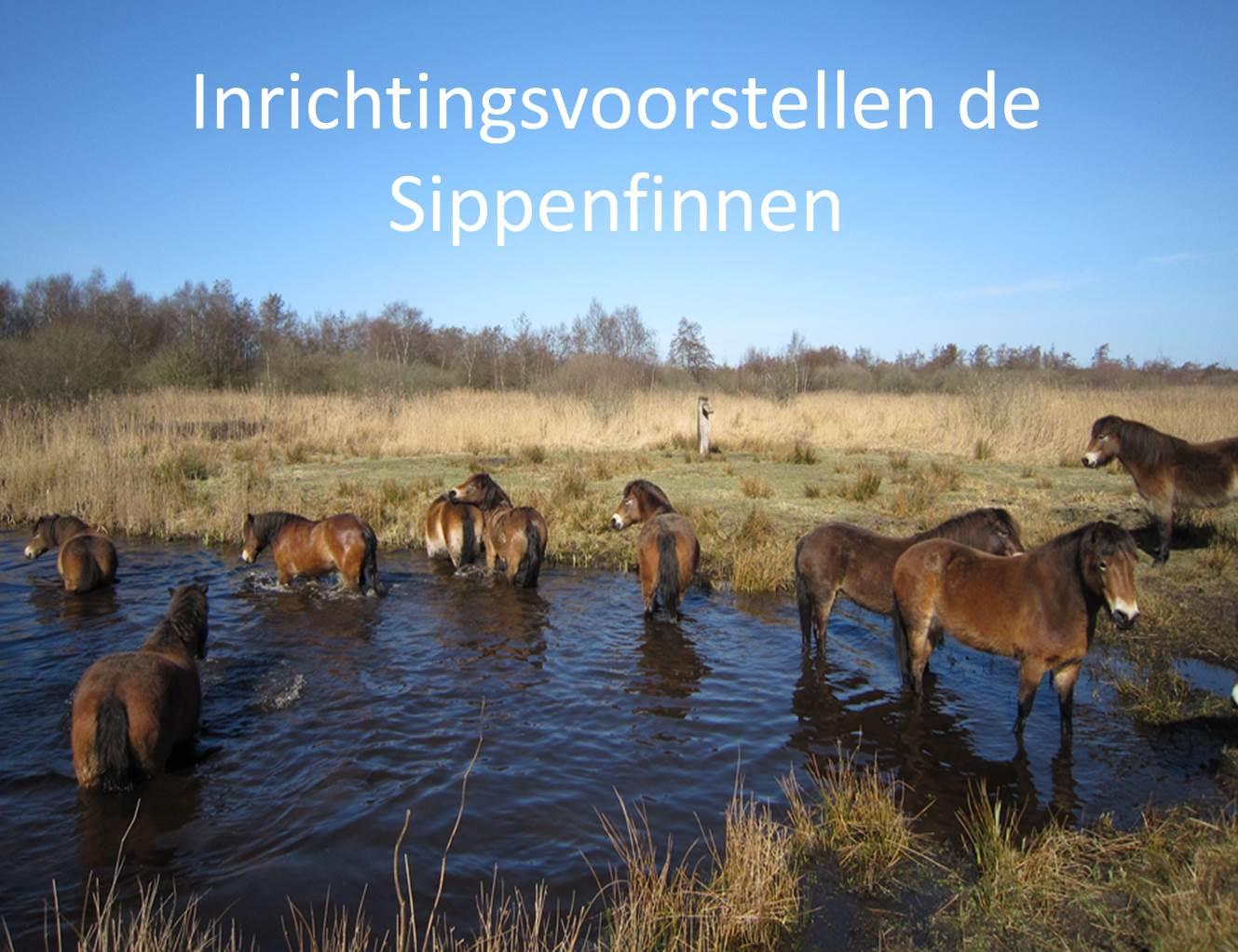 Inrichtingsvoorstellen de Sippenfinnen