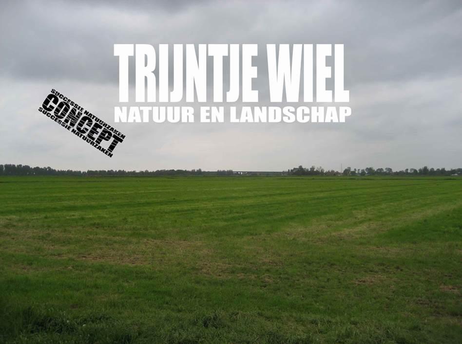 Trijntje Wiel, natuur & landschap