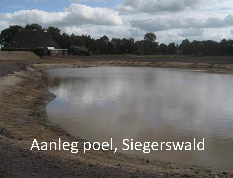 Aanleg poel, Siegerswald