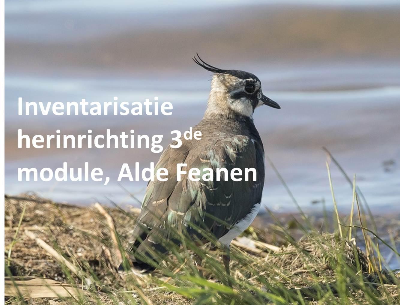 Inventarisatie herinrichting 3de module, Alde Feanen