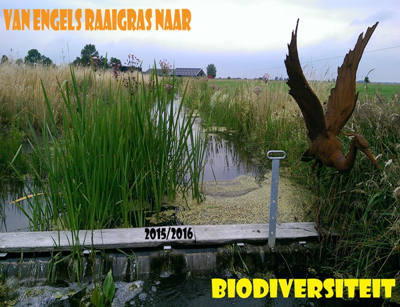 Van Engels raaigras naar biodiversiteit